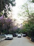 Maadi-Straßen Stockbild