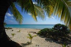 Maagdelijk strand Stock Foto