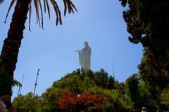 Maagdelijke het standbeeldtribunes van Mary hoog boven de tuinen op Cerro San Cristobal op een mooie dag met duidelijke blauwe he stock afbeeldingen