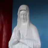 Maagdelijke Mary Stock Afbeeldingen