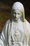 Maagdelijke Mary stock afbeelding