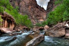Maagdelijke Rivier bij Park Zion   stock foto's