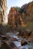 Maagdelijke Rivier in Zion National Park Royalty-vrije Stock Afbeelding