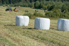 Maai het gras stock fotografie