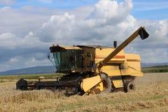 Maaidorser bij het werk op graangewassengebied. stock foto
