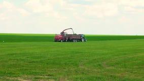 Maaidorser maait het groene gras de voorbereiding van het veevoer stock footage