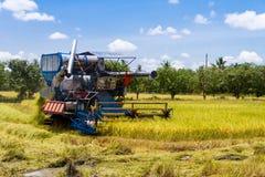 Maaidorsers oogstten stock fotografie