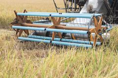 Maaidorsersmachine het oogsten padie stock foto