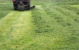 Maaiend gras Stock Afbeelding