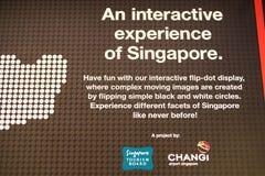 Maak tot het Uw Singapore Stock Foto's