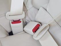 Maak veiligheidsgordels in de auto voor veiligheid vast Royalty-vrije Stock Foto