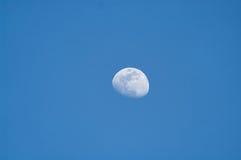 Maan bij schemering Stock Foto