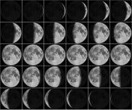 Maan 30 dagenfasen Stock Afbeelding