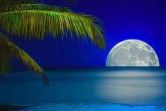 Maan die het water van een tropisch strand wordt overdacht Stock Afbeelding