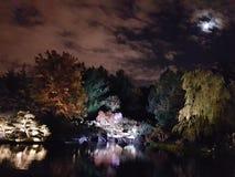 Maan die op de kleuren van de nacht en de meerbezinning letten Stock Afbeeldingen