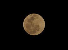 Maan, totale maanverduistering die van Utila, Honduras wordt gezien Royalty-vrije Stock Afbeelding