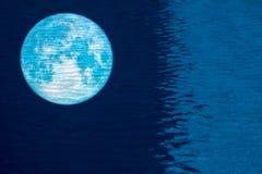 maan van bezinnings de volledige vissen op waterspiegel van het zwemmen poo royalty-vrije stock afbeelding