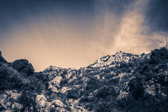 Mañana en la montaña Fotografía de archivo libre de regalías