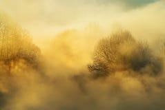 Mañana escarchada del invierno Imagen de archivo
