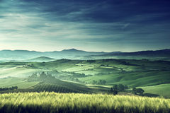 Mañana temprana de la primavera en Toscana, Italia Imagenes de archivo