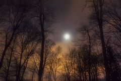Maanbeschenen avondhemel Stock Fotografie