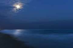 Maanbeschenen Nacht Stock Afbeelding