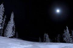 Maanbeschenen nacht Royalty-vrije Stock Foto's