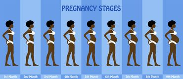 Maand na maand Zwangerschapsstadia van zwangere afrovrouw met biki Stock Afbeelding
