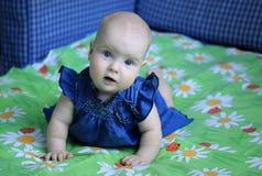5-maanden babymeisje Royalty-vrije Stock Afbeelding