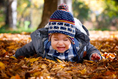 8 maanden oud jongens in de herfst Royalty-vrije Stock Fotografie