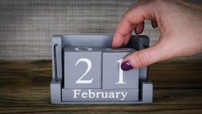 21 maanden van kalenderfebruari stock video