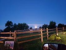 Maanlicht door de bomen royalty-vrije stock foto