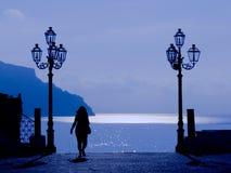 Maanlicht op de kust Royalty-vrije Stock Afbeeldingen