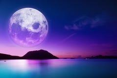 Maanlichtstrand Stock Afbeeldingen