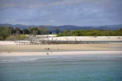 Maanpunt, Fraser Island stock foto's