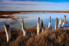 Maart-landschap met oude gebroken omheining, de zomerdag met blauw water en hemel, Camargue, Frankrijk Stock Foto