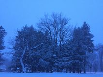 Maart-sneeuwstorm stock foto