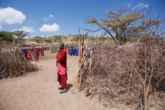 Maasai人和他们的村庄在坦桑尼亚,非洲 免版税库存照片