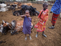 Maasai Obraz Royalty Free