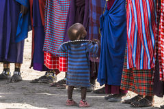 Maasai child Royalty Free Stock Image