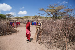 Maasai folk och deras by i Tanzania, Afrika Royaltyfria Foton