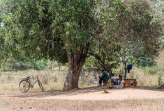 Maasai Stock Photos