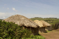 Maasai kojor i by Royaltyfri Fotografi
