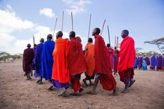 Maasai manar i deras rituella dans i deras by i Tanzania, Afrika Royaltyfri Fotografi