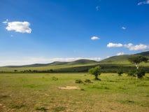 Maasai Mara National Reserve in Kenya Stock Photos