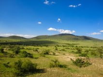 Maasai Mara National Reserve nel Kenya Immagini Stock