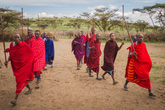 Maasai's welcome dancing. Photography taken in Arusha, Tanzania royalty free stock image