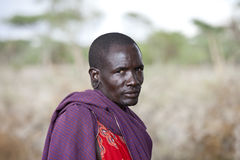 Maasai shephard Royalty Free Stock Photo