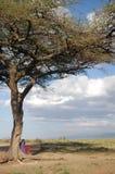 Maasai under a tree Royalty Free Stock Image
