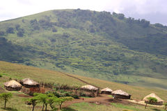 Maasai village. Near the Ngorongoro crater in tanzania royalty free stock image